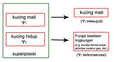 diagram - DK_schrodCat