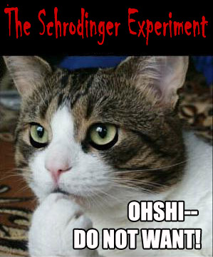 the Schrodinger lolcat