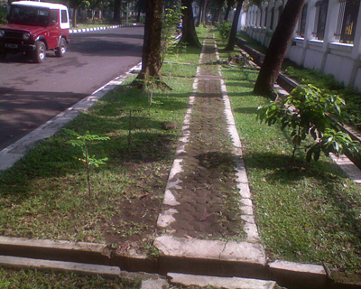 trotoar