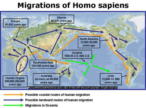 peta migrasi homo sapiens